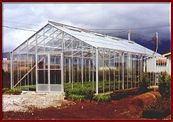 commercial greenhouse kits greenhouses large greenhouses