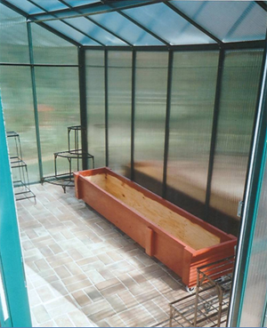 Fivewall polycarbonate greenhouse interior